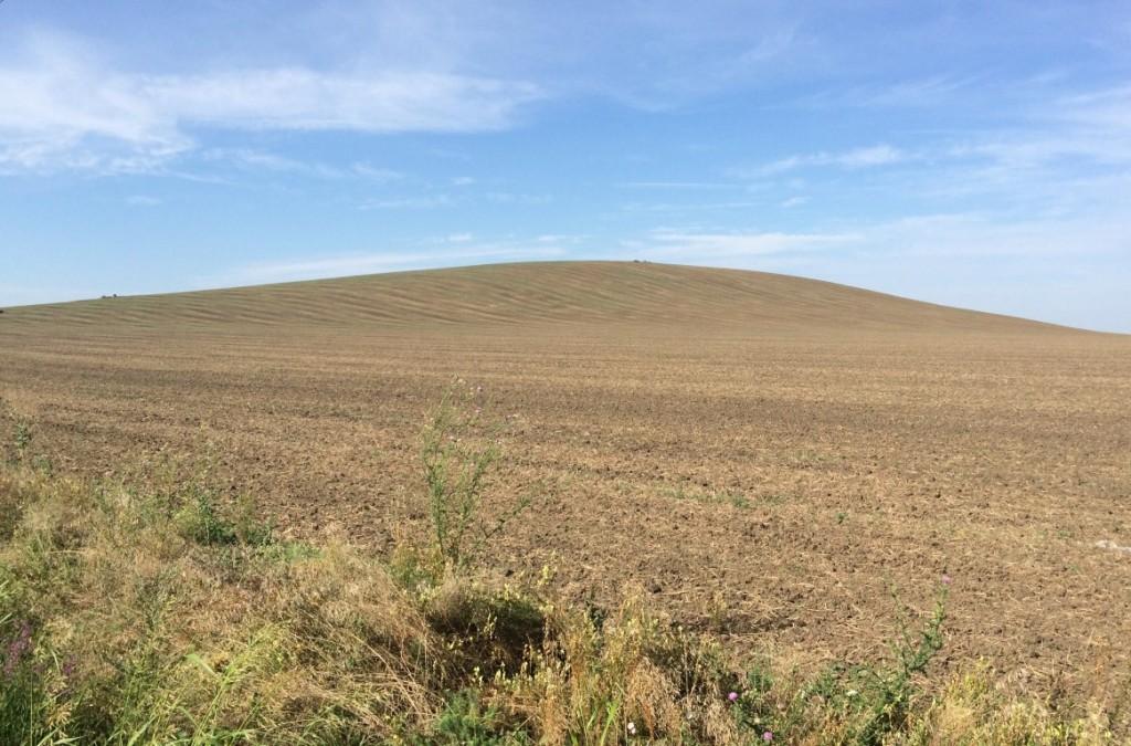 19_Semlacu Mare (Dealul Sumigului)